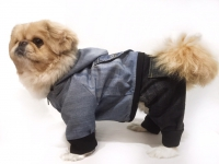 Комбинезон для собаки - 004