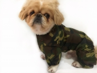 Комбинезон для собаки - 010