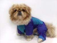 Дождевик для собаки - 005